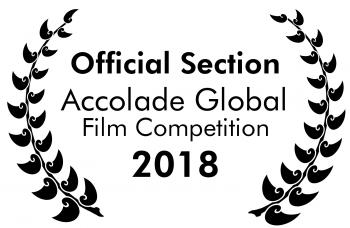 Accolade Selection Custom 1